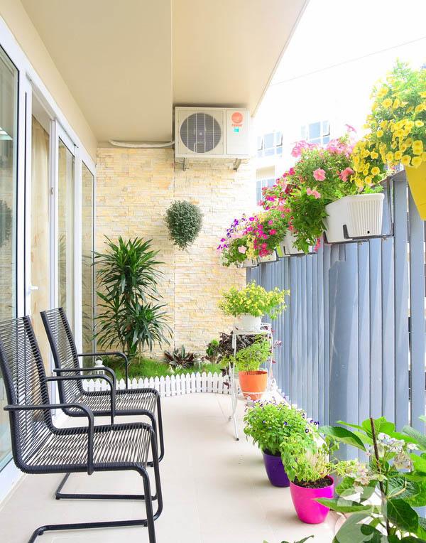 Trồng cây hoa cho ban công chung cư đẹp mà dễ trồng