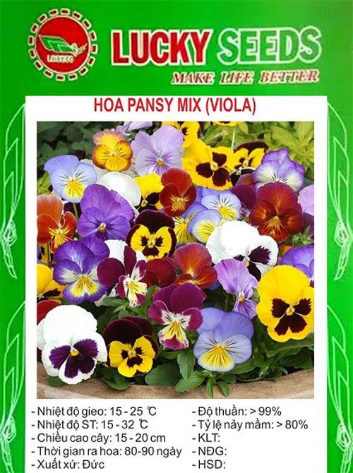 Hạt giống hoa Pansy (Viola)