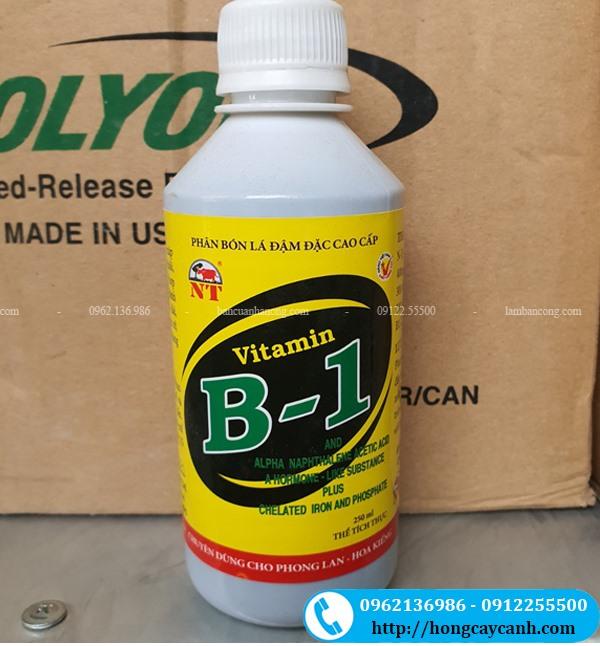 Phân Bón Lá Vitamin B1