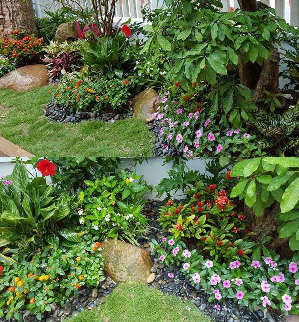 Thiết kế và trồng cây sân vườn