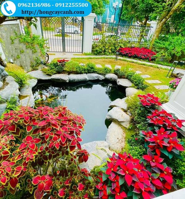 Tiểu Cảnh Sân Vườn Mini Đẹp